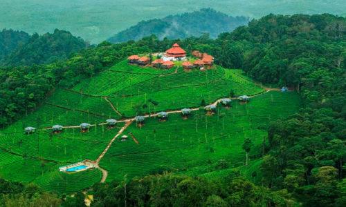 Ooty, Tamil Nadu