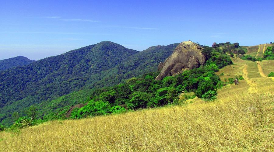 Wayanad Pakshipathalam Bird Sanctuary, Kerala