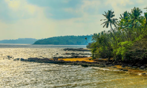 Bambolim Beach, Panjim, North Goa, Goa, India