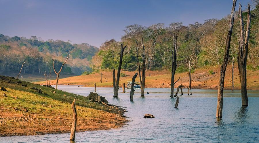 Thekkady, Kerala