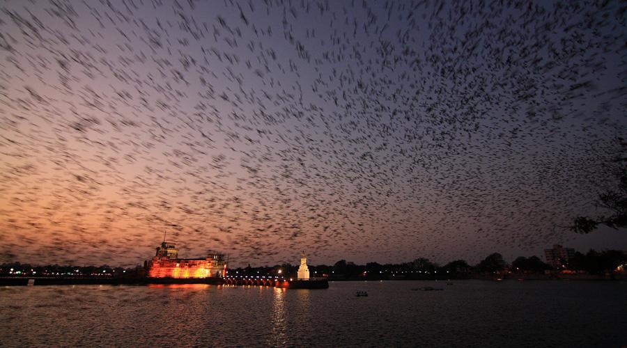 Lakhota Lake, Jamnagar, Gujarat, India