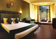 Snow Valley Resorts, Manali, Maharaja Room