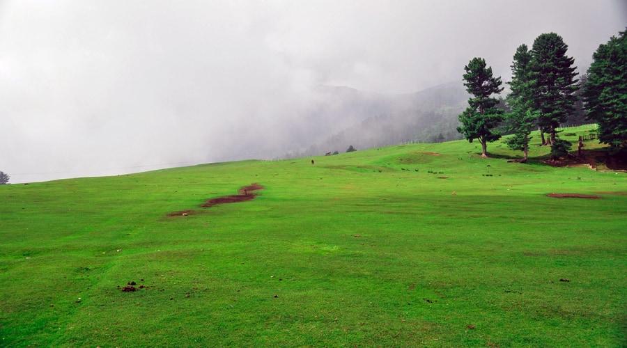 Patnitop, Udhampur, Jammu and Kashmir, India