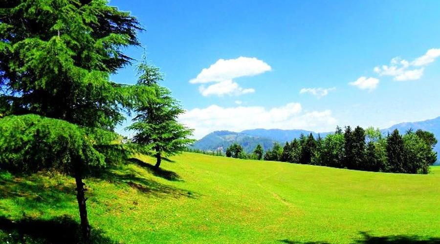 Naldehra, Shimla, Himachal Pradesh, India