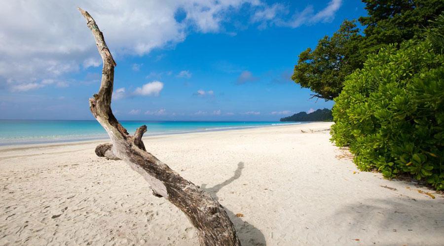 Elephant Beach, Havelock Island (Swaraj Dweep), Andaman and Nicobar Islands, India