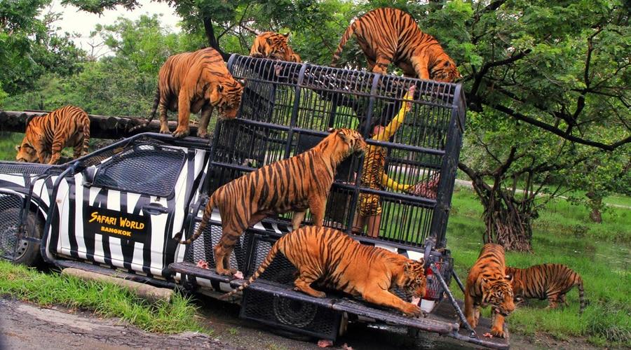 Safari World, Bangkok, Thailand, Asia