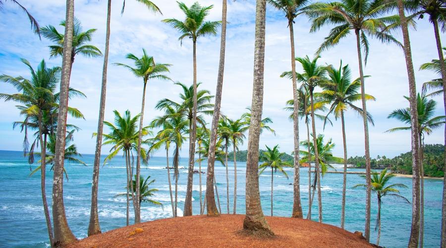 Mirissa Beach, Sri Lanka, Asia