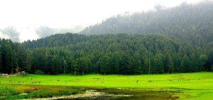 Khajjiar, Himachal, India, Asia, Travel Leads