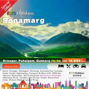 Sonmarg Tour 7N/8D @ 16,499