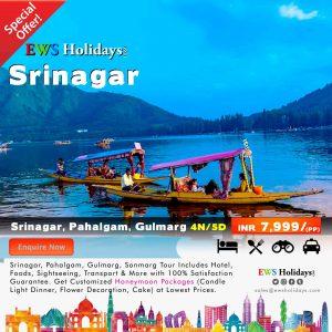 Srinagar Tour 4N/5D @ 7,999